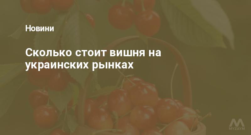 Сколько стоит вишня на украинских рынках