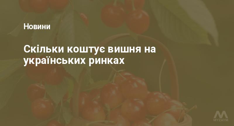 Скільки коштує вишня на українських ринках