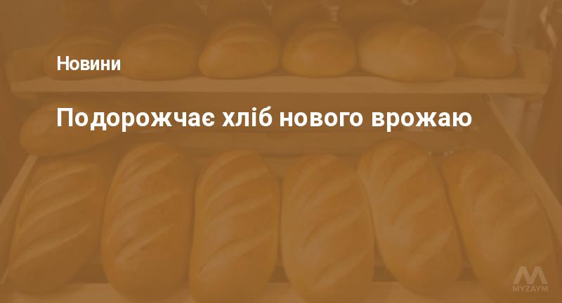 Подорожчає хліб нового врожаю