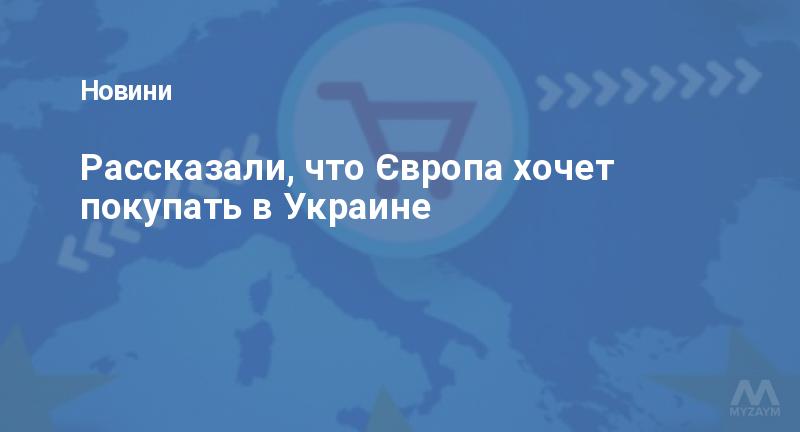 Рассказали, что Європа хочет покупать в Украине