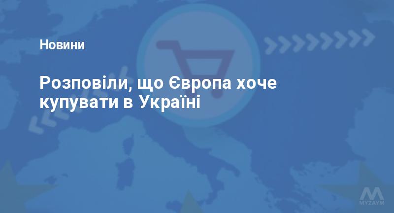 Розповіли, що Європа хоче купувати в Україні