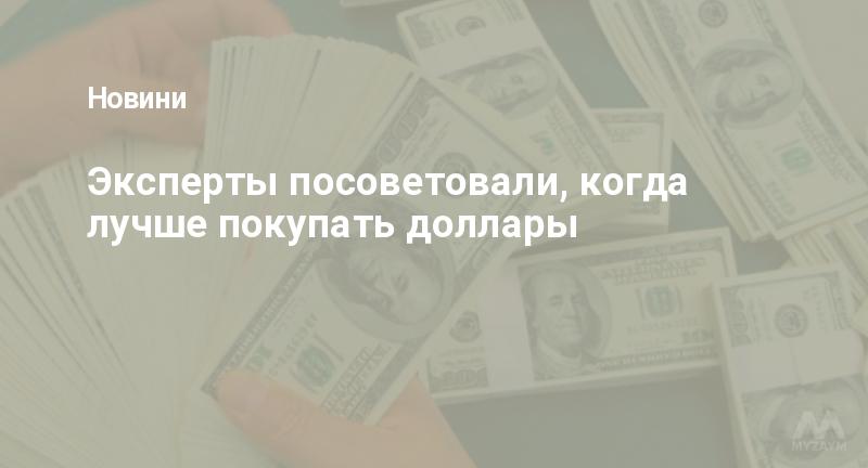 Эксперты посоветовали, когда лучше покупать доллары