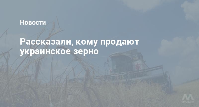 Рассказали, кому продают украинское зерно
