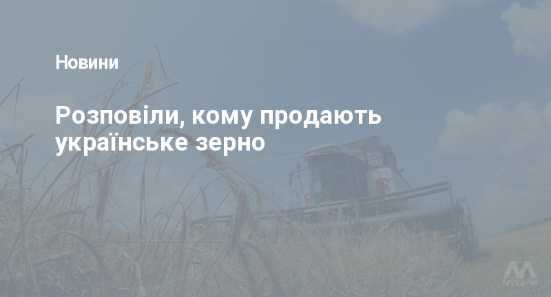 Розповіли, кому продають українське зерно