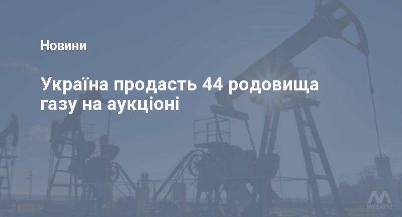 Україна продасть 44 родовища газу на аукціоні