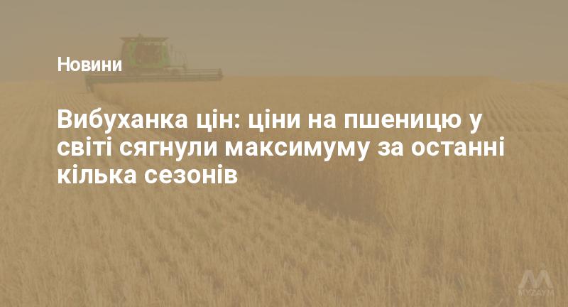 Вибуханка цін: ціни на пшеницю у світі сягнули максимуму за останні кілька сезонів