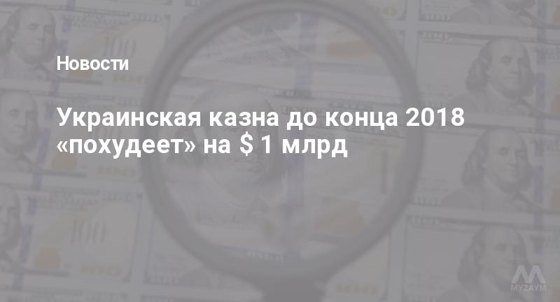 Украинская казна до конца 2018 «похудеет» на $ 1 млрд