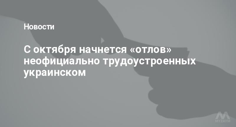 С октября начнется «отлов» неофициально трудоустроенных украинском
