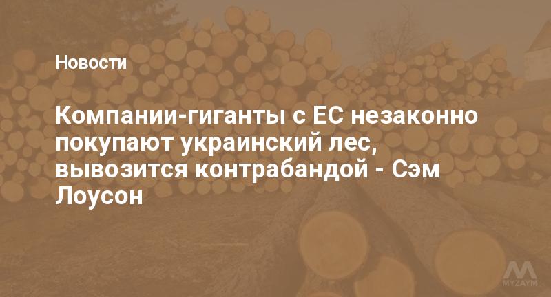 Компании-гиганты с ЕС незаконно покупают украинский лес, вывозится контрабандой - Сэм Лоусон