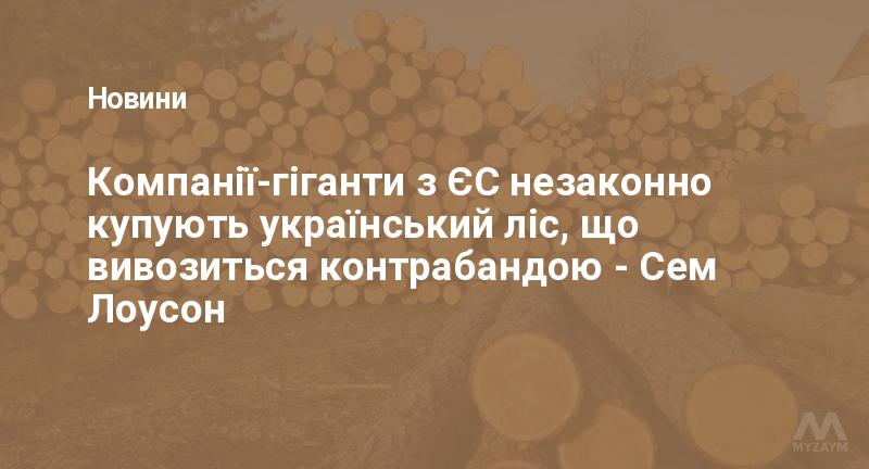 Компанії-гіганти з ЄС незаконно купують український ліс, що вивозиться контрабандою - Сем Лоусон