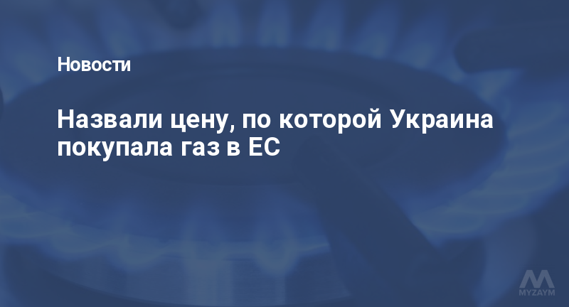 Назвали цену, по которой Украина покупала газ в ЕС
