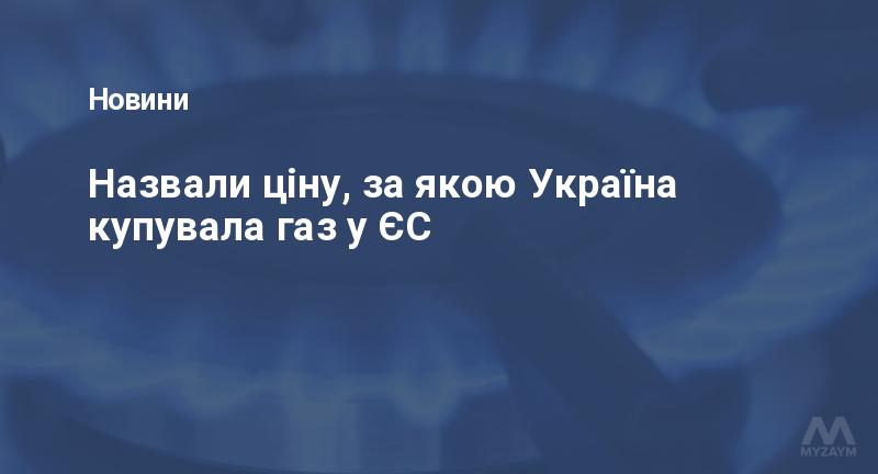 Назвали ціну, за якою Україна купувала газ у ЄС