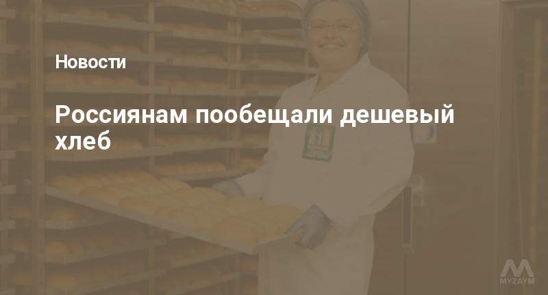Россиянам пообещали дешевый хлеб