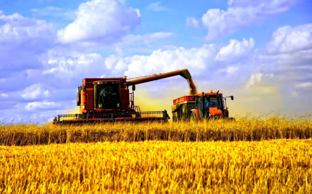 Засуха спричинить підвищення ціни на хліб