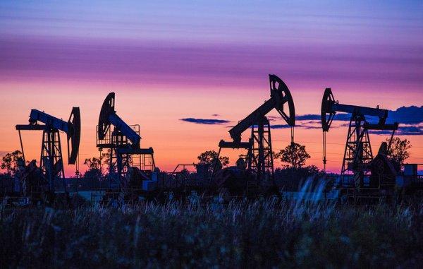 РФ в июле восстановит добычу нефти на 250 тысяч баррелей в сутки