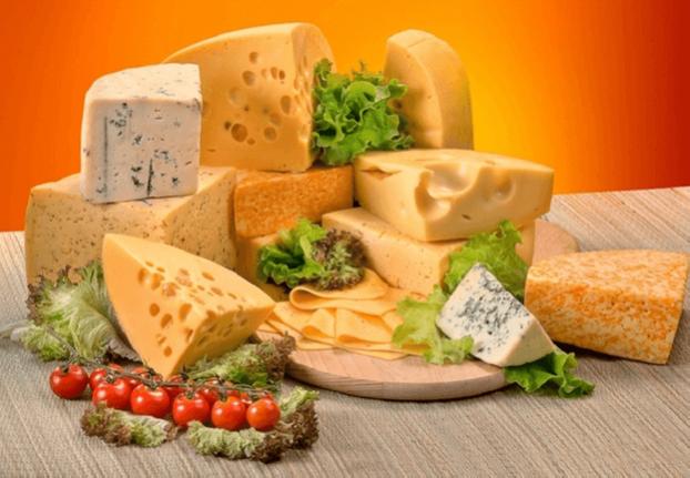 Сырный кластер откроет возможности для мелких и средних производителей