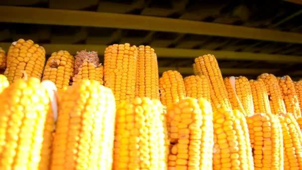 Збір урожаю зерна перевищив 80%